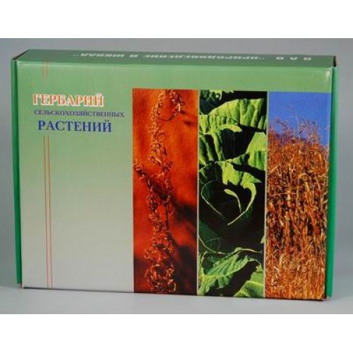 """Гербарий """"Сельскохозяйственные растения"""" (28 видов)"""