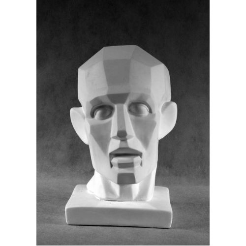 Гипсовая голова Обрубовка по гудону (не семетричная)