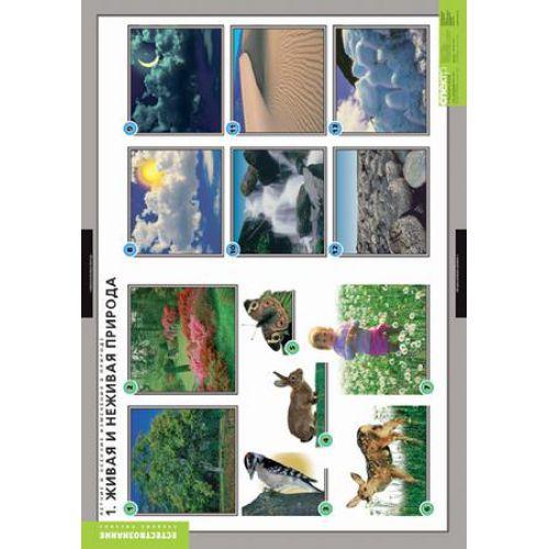 Комплект таблиц Летние и осенние изменения в природе